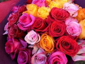 母の日 カーネーション以外の花 おすすめ バラ