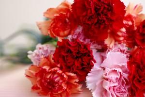 母の日 相場 予算別 花