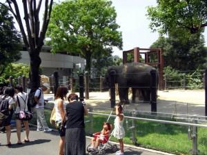 GW2015 予算別楽しみ方 動物園