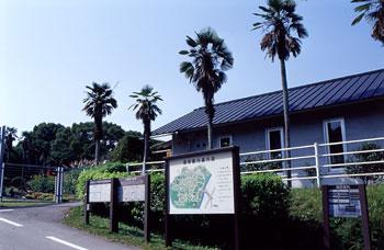 みどりの日 無料開放 大阪市立大学理学部付属植物園