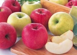 風邪に効く 食べ物 食材 りんご