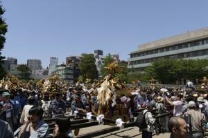 三社祭2015 町内神輿連合渡御