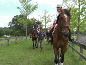 父の日 過ごし方 楽しい 喜ぶ 乗馬
