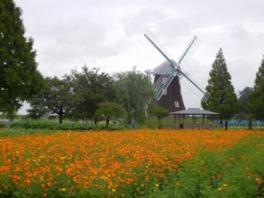 シルバーウィーク 2015 空いている 穴場 関東 あけぼの山農業公園