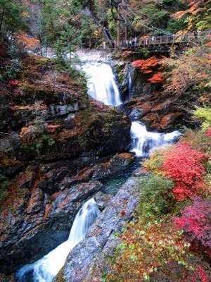 関西の紅葉名所スポットランキング2015!ライトアップや見ごろの時期は? みたらい渓谷
