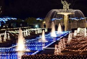 クリスマス デート おすすめ スポット 東京 昭和記念公園