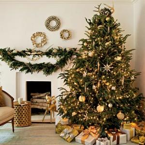 クリスマス デート プラン おすすめ 2015 おうちデート
