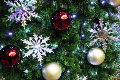 大学生 クリスマスパーティー 予算
