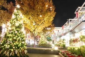 クリスマス デート おすすめ スポット 名古屋 星が丘テラス