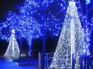 大学生 クリスマス デートプラン おすすめ 過ごし方 イルミネーション