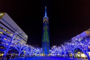 クリスマス デート おすすめ スポット 福岡 福岡タワー